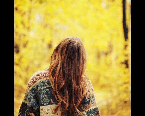 Chute-cheveux-automne.png