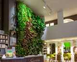 mur-vegetal-biotifulhair.jpg